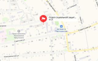 Соцзащита Партизанского